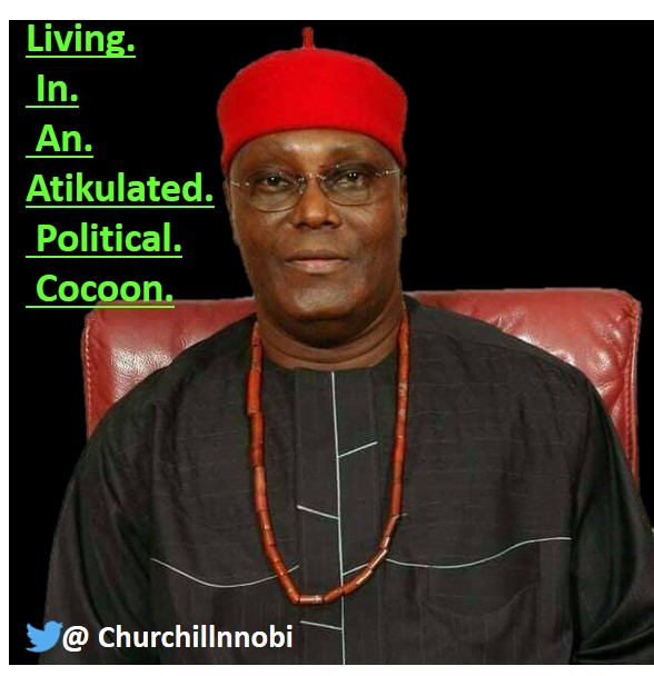 atikulated political cocoon